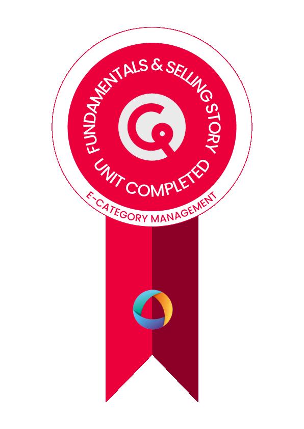 Badge 3 Fundamentals and selling story